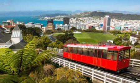 Trường THPT tại Wellington, New Zealand