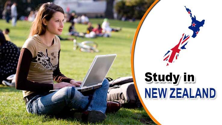 study NZ