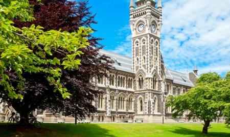 Cơ hội việc làm sau tốt nghiệp tại New Zealand